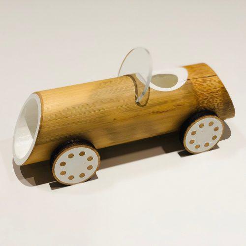 100% biologisk nedbrytbare Bambus Bil